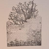 Lilli-Krõõt Repnau-cropped